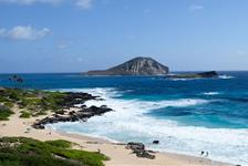 Hidden Gems of Oahu Tour plus North Shore Turtle Snorkeling in Honolulu, Hawaii