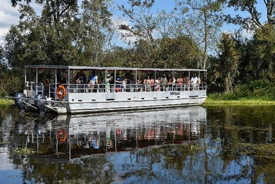 Adventures of Jean Lafitte Swamp Tour in Lafitte, LA