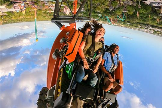 Busch Gardens® Tampa Bay – Tigris®, Florida's tallest launch coaster, with an exhilarating triple launch, and a 150-foot skyward surge.