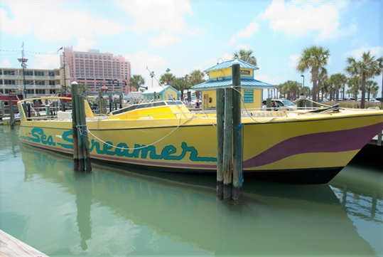 Clearwater Beach Speedboat Adventure with Lunch