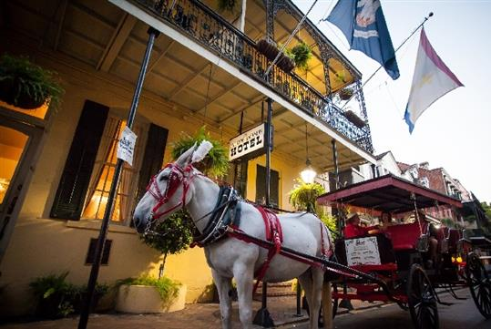 French Quarter Carriage Tours in New Orleans, LA