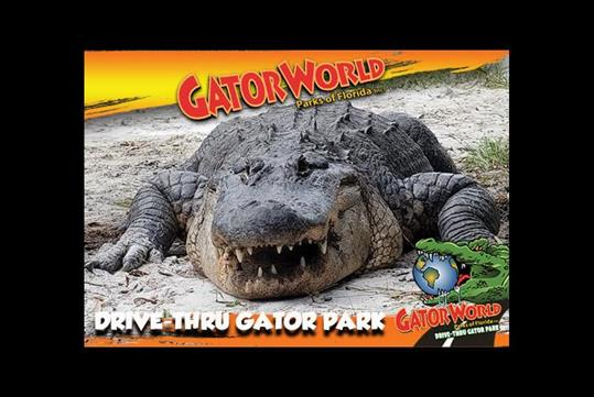 Drive thru gator park just one hour away from Orlando!