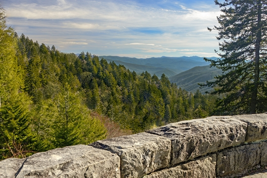Newfound Gap - Pink Jeep Tours in Pigeon Forge, Tennessee