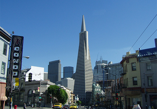 San Francisco City Skyline - Super Saver by Day Tour - City Tour & Redwoods Visit in San Francisco, California