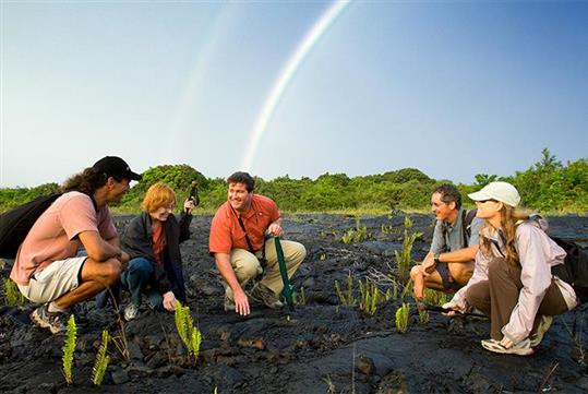 Enjoy a hike through Volcanoes National Park selected for you daily based on best conditions, by your guide