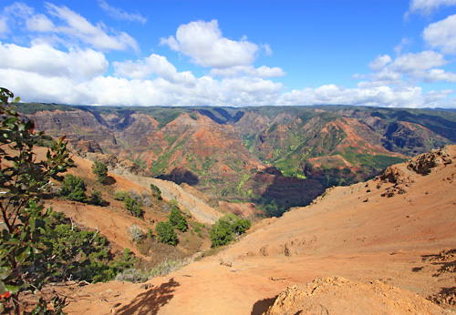 Waimea Canyon Tour - Kauai in Honolulu, Hawaii