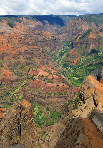 Waimea Canyon & Fern Grotto Tour - Kauai in Waimea, Hawaii