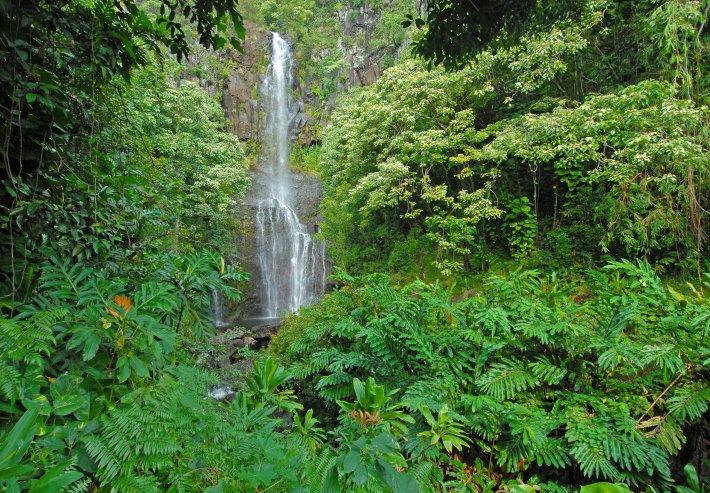 Waterfall 484471681 Kauai activities