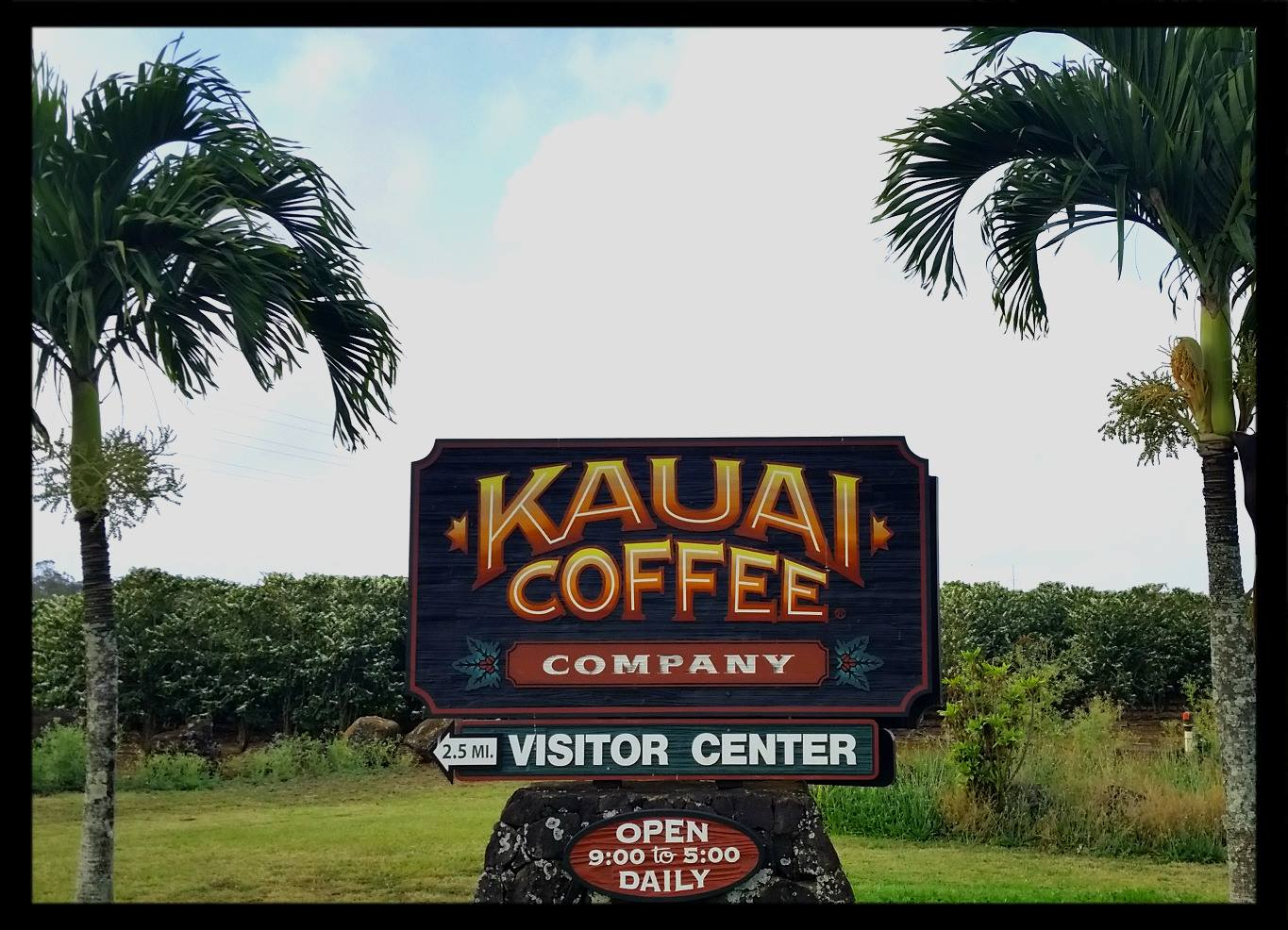 Kauai Coffee Co FB