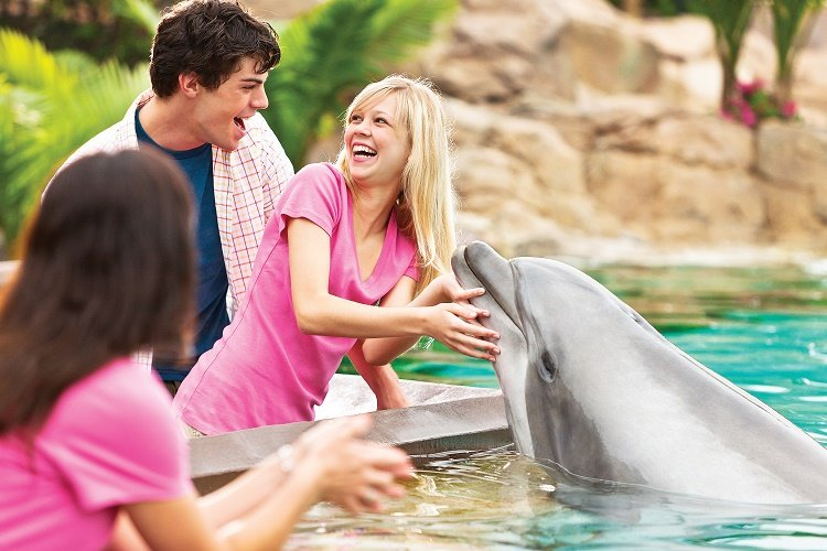 seaworld San Diego tips