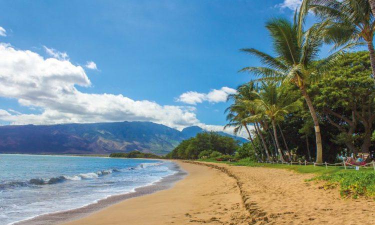 Maui Cities