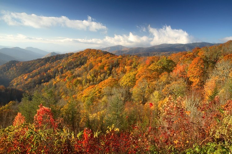 Mountain ridges glow with autumn color, Great Smoky Mountains National Park hikes in the smoky mountains