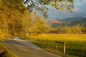 Cades-Cove Free Things To Do in Pigeon Forge Tennessee