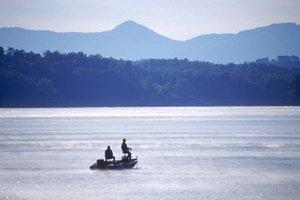 Douglas-Lake