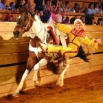 Dolly_Parton_s_Dixie_Stampede_Dinner_Attraction_(012)