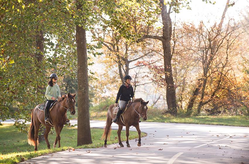 Fall at Biltmore Estate