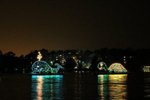Electrical Water Pageant Flickr