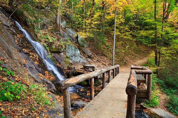See Pigeon Forge Fall Foliage in early October