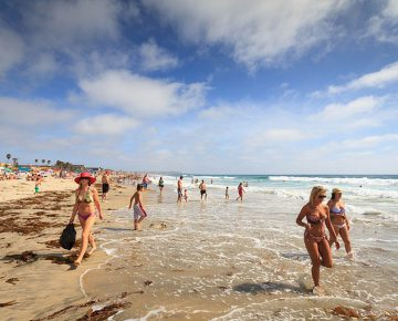 Your Guide To San Diego Beaches