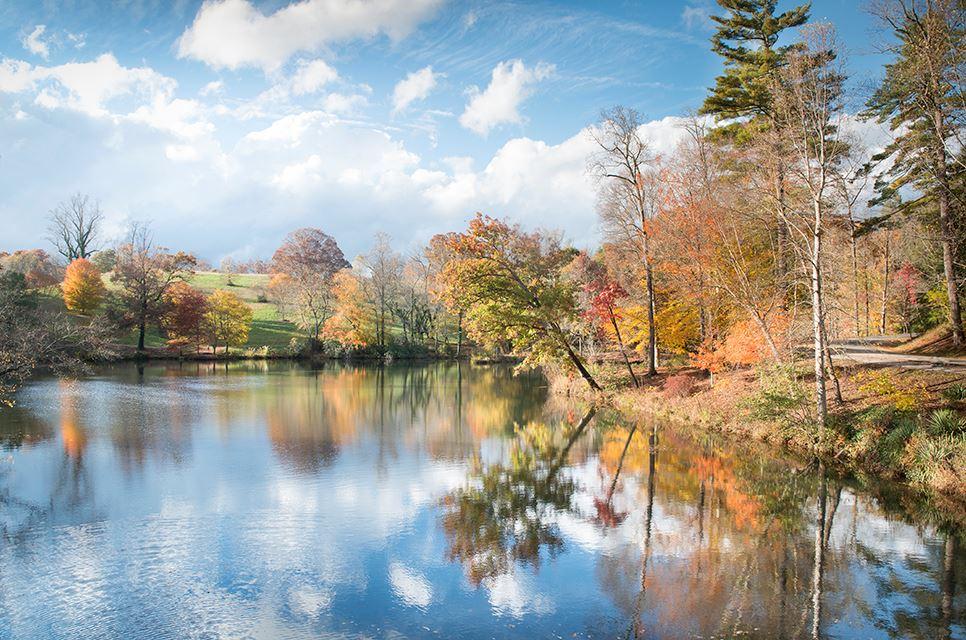 Fall at Biltmore Estate Facebook 002