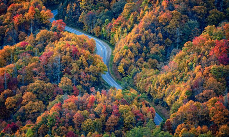 Smoky Mountain Fall Colors