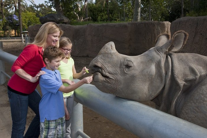 Family feeds a rhino at the San Diego Zoo, one of the top San Diego landmarks.