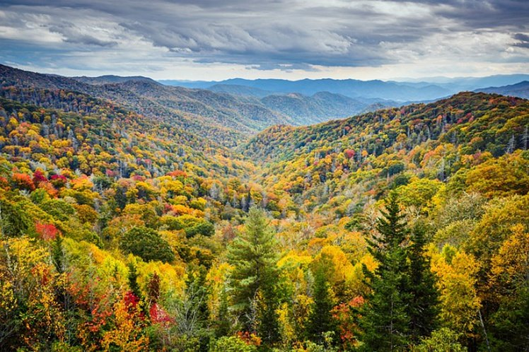 Pigeon Forge Fall Foliage sweeps through the Smoky Mountains with yellows, reds, oranges, and greens.
