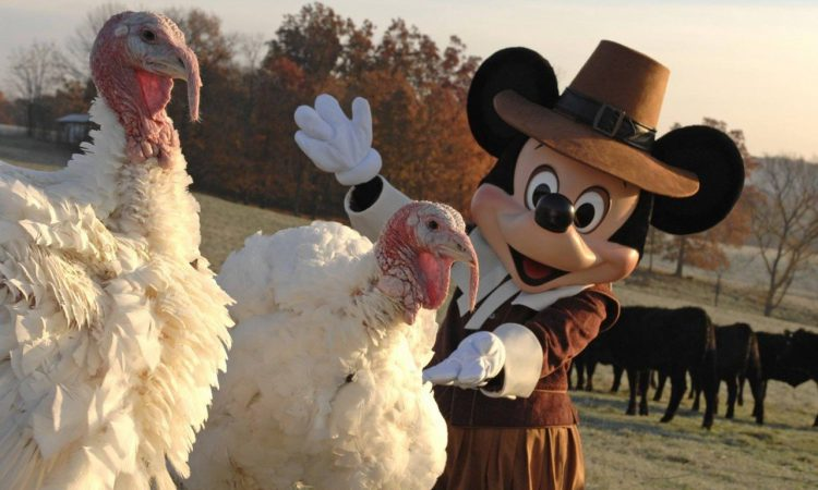 Disney World Thanksgiving
