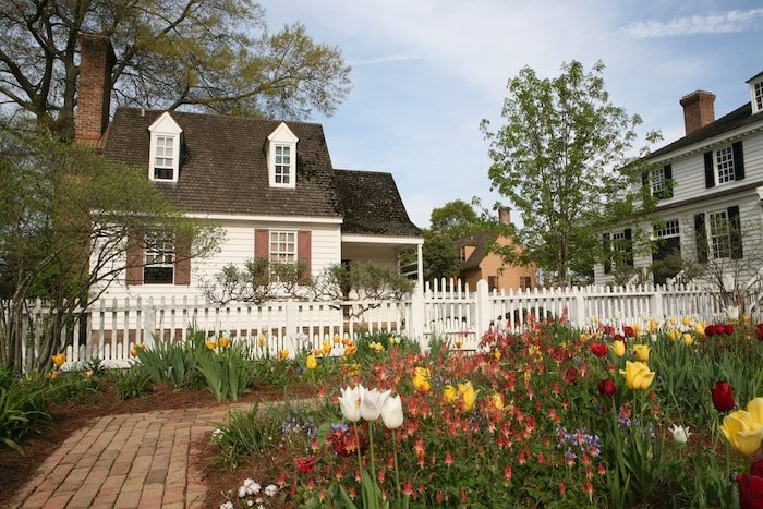 White, yellow, and red tulips, among other flowers, grow in a garden in a white picket fence outside a white Colonial Williamsburg house