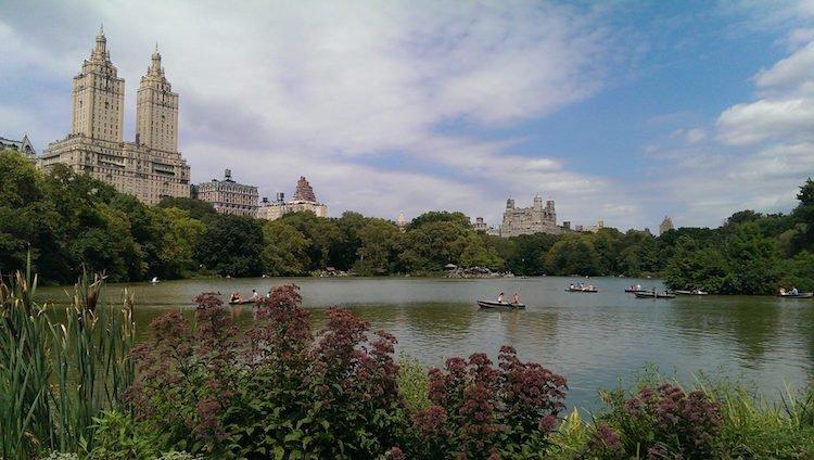 central-park-from-john-new-york-city