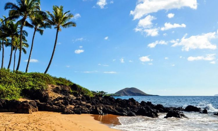 5 Things to Do on a Winter Trip to Maui