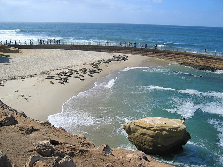 A trip to one of San Diego's many beaches is nearly free!