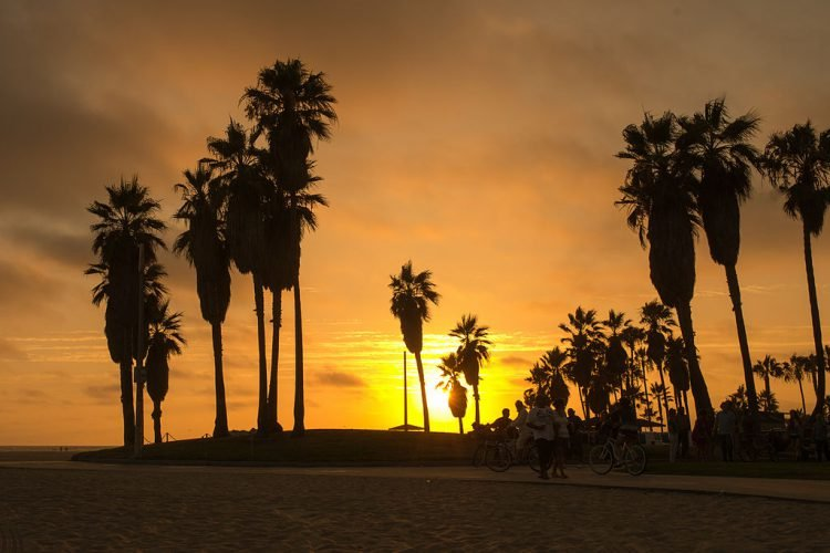 Best Beaches near LA - Venice Beach