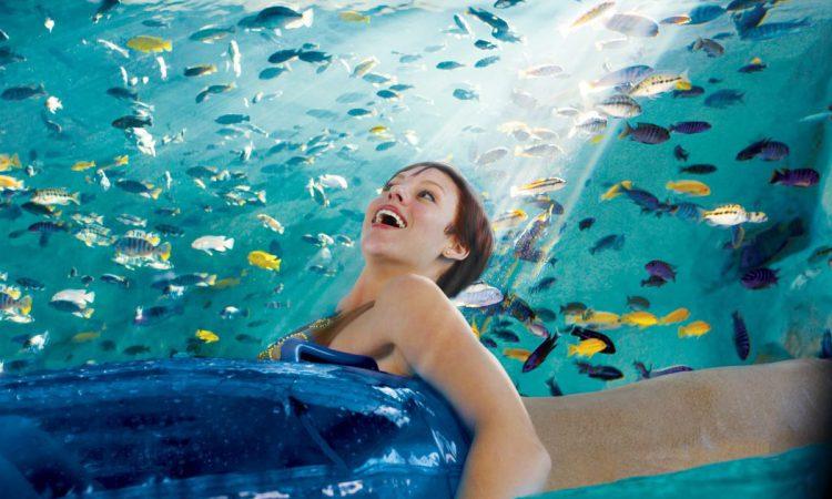 Aquatica Orlando Tips