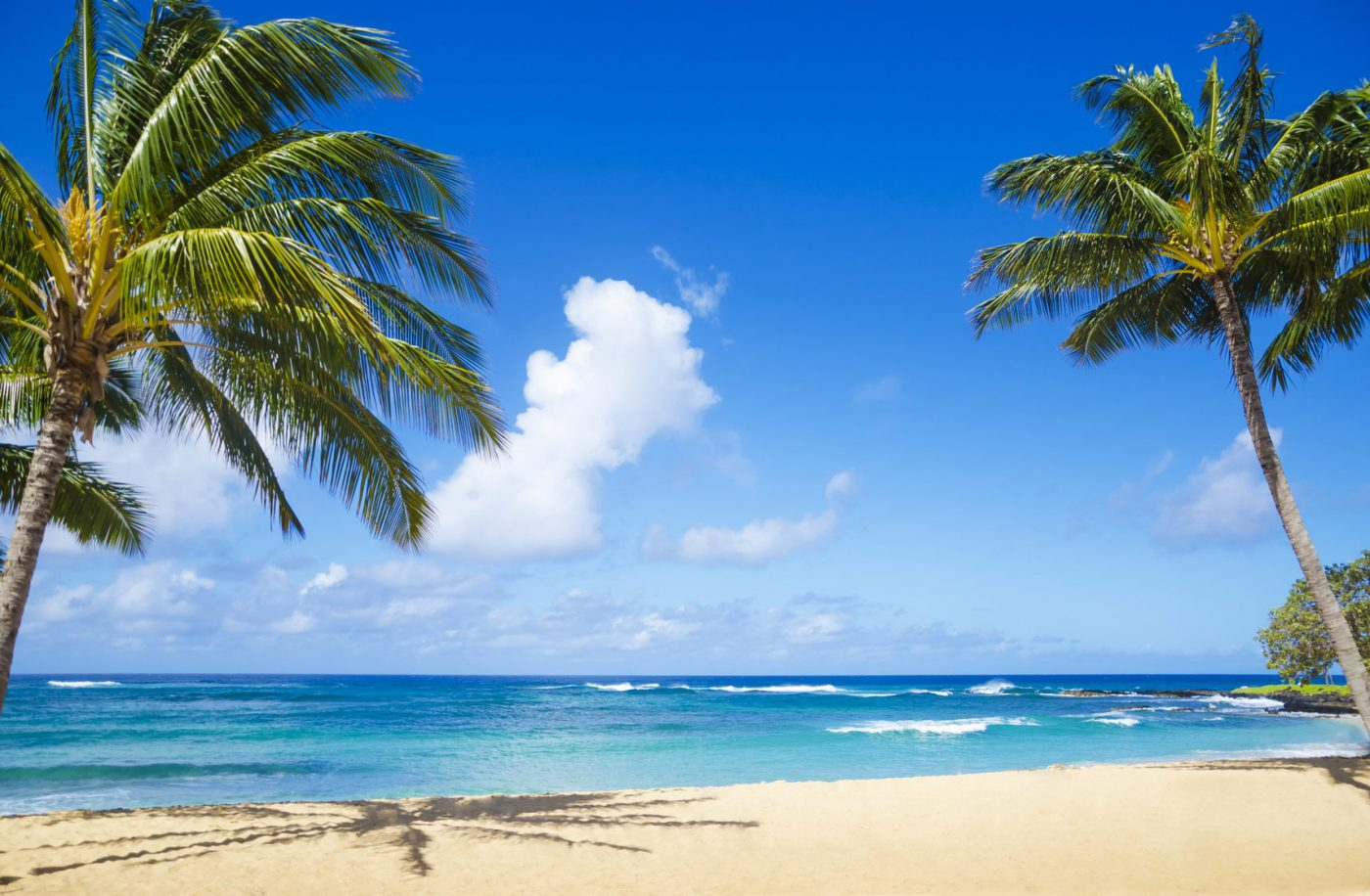 Hawaii beaches for family fun