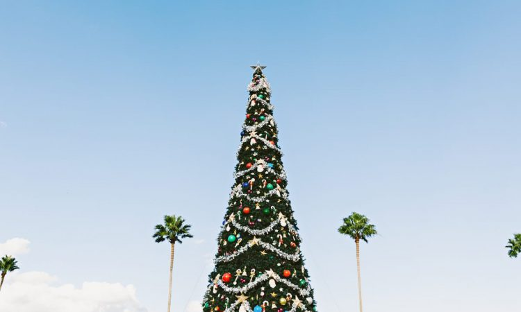 Things to do in Orlando during Christmas