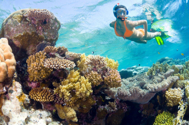Best Maui Snorkeling Spots