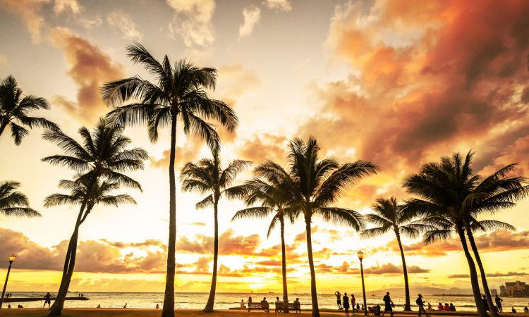 What to Do in Oahu