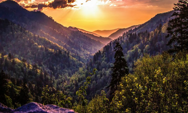 Great Smoky Mountains National Park guide