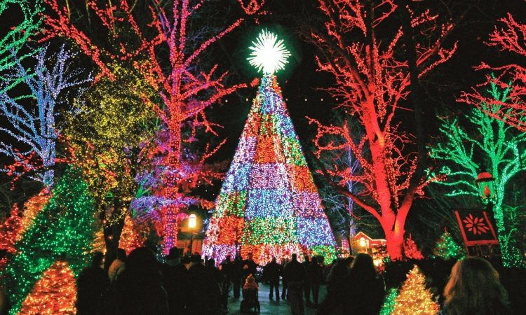 Branson Missouri Christmas 2019.5 Of The Best Things To Do In Branson During Winter