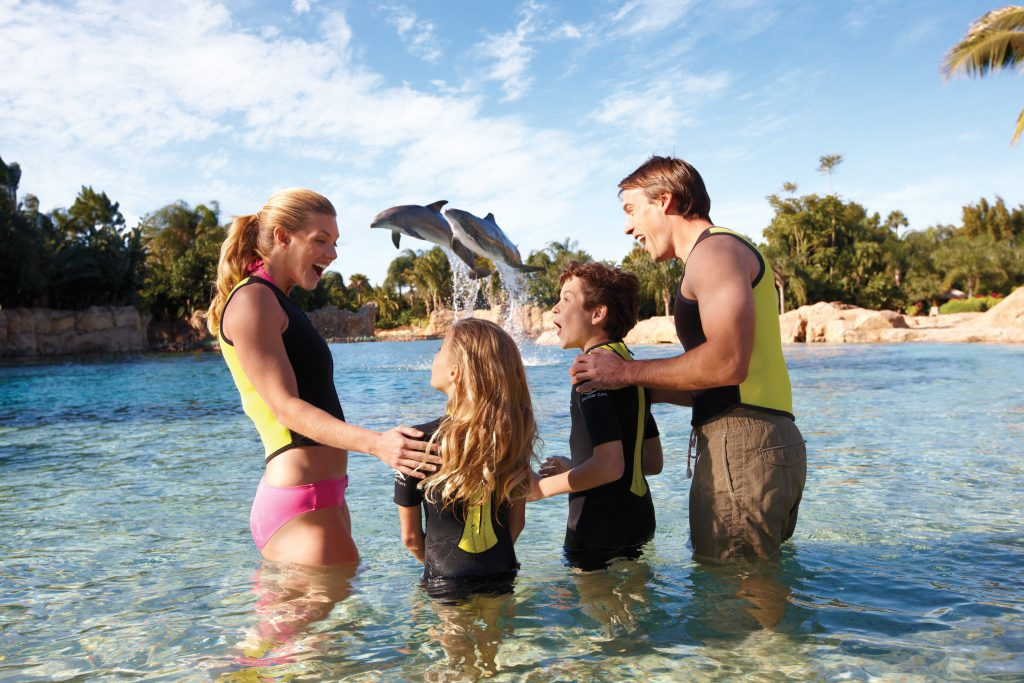 These Discovery Cove tips will help guide your vacation planning.