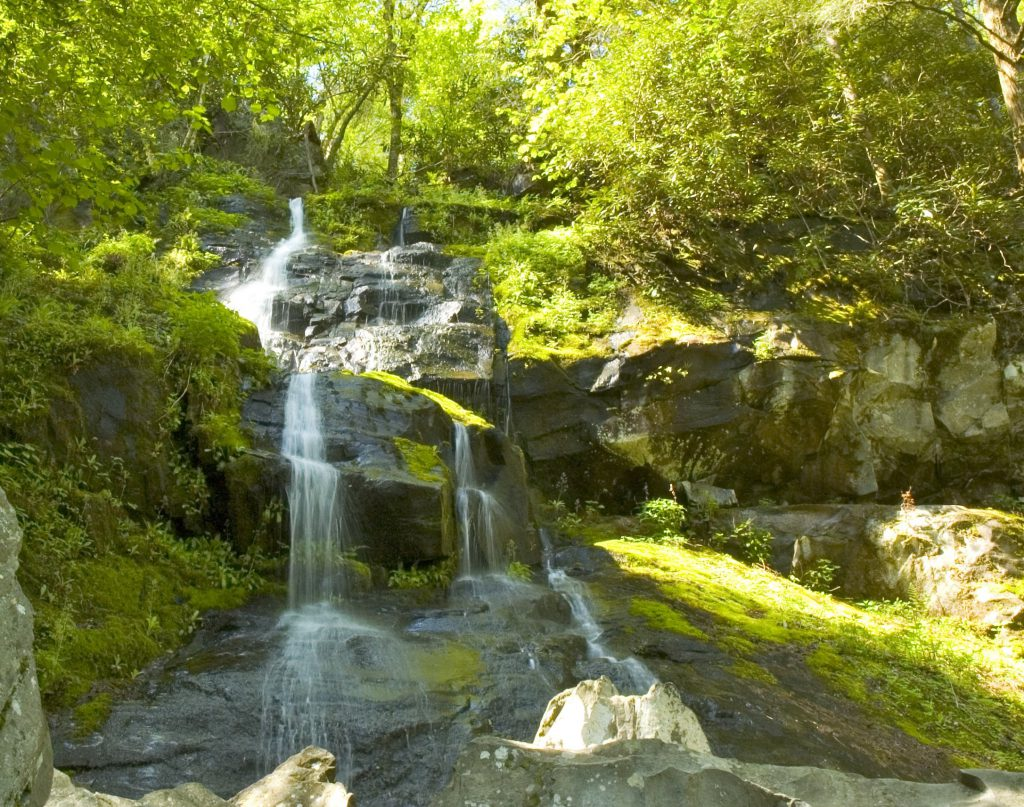 Waterfall hikes in the Great Smoky Mountains