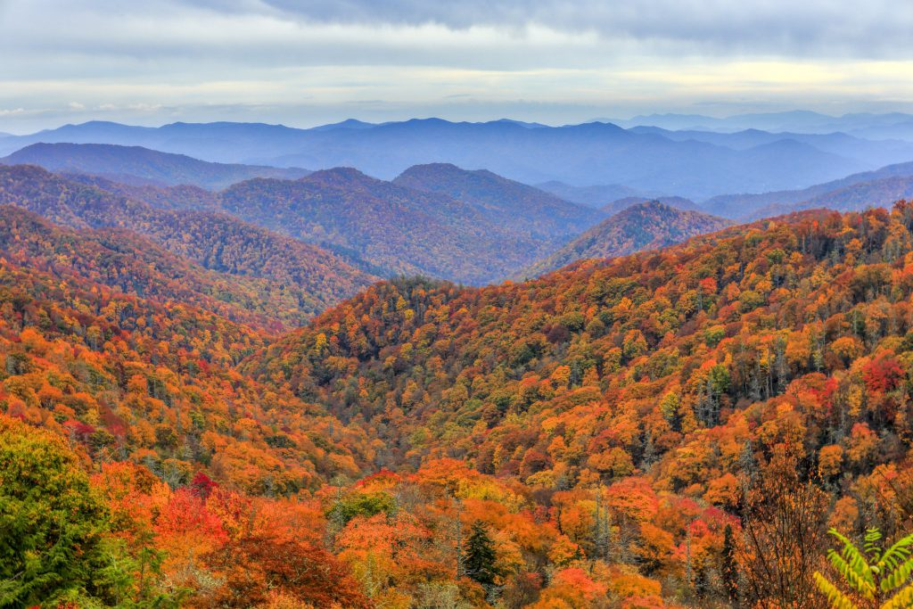 Looking for adventure? Visit Pigeon Forge in the fall!