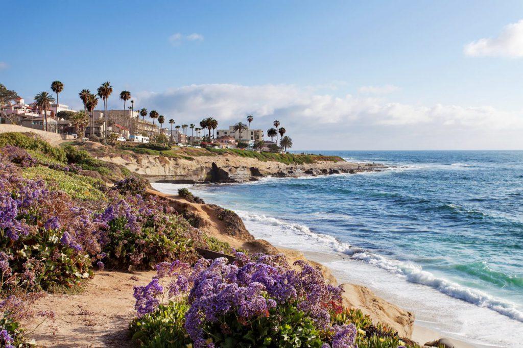 Bring the family to La Jolla Shores