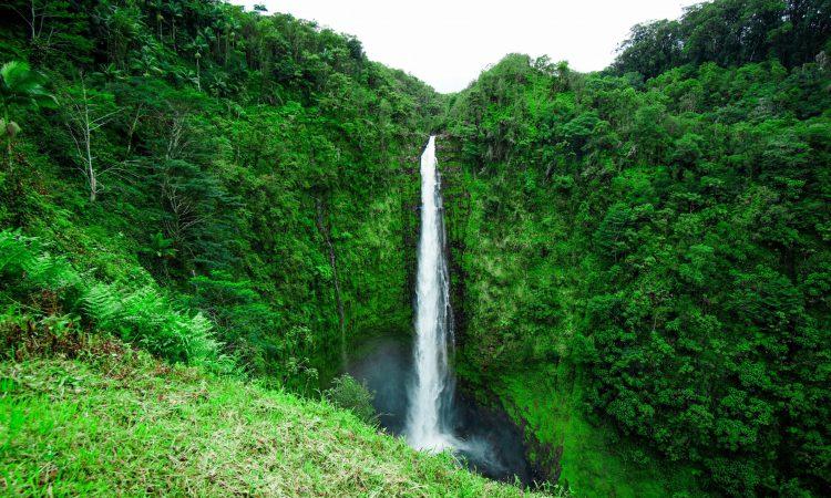 Big Island Scenic Hikes