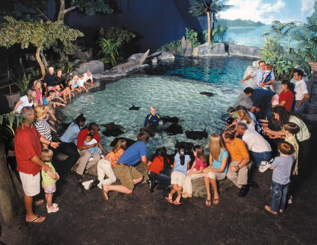 Myrtle Beach Aquarium Coupons