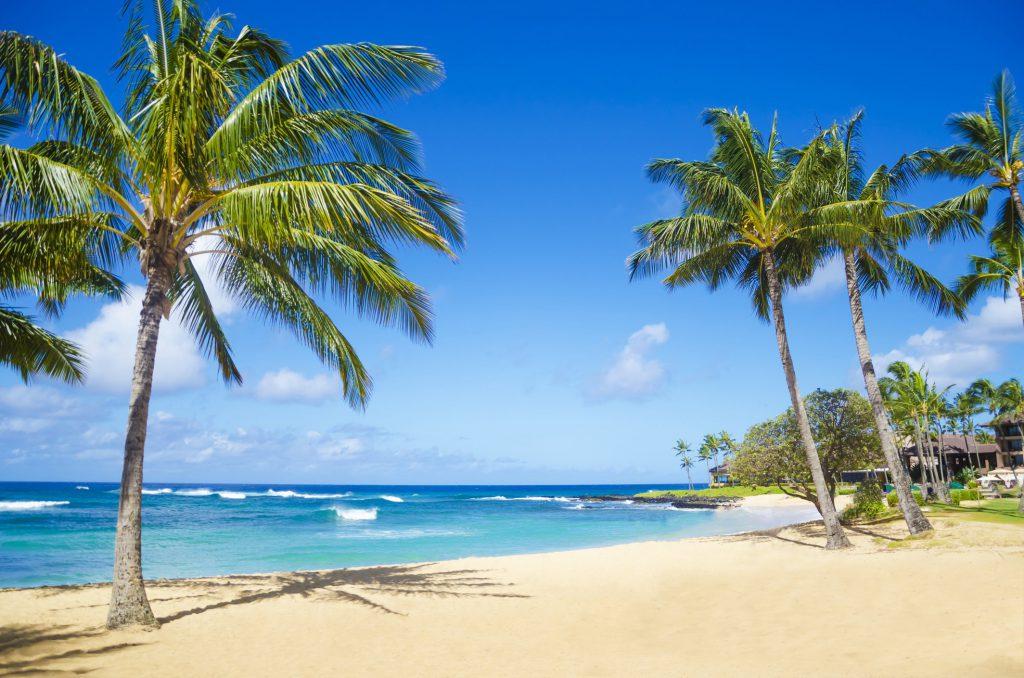 reasons to visit hawaii