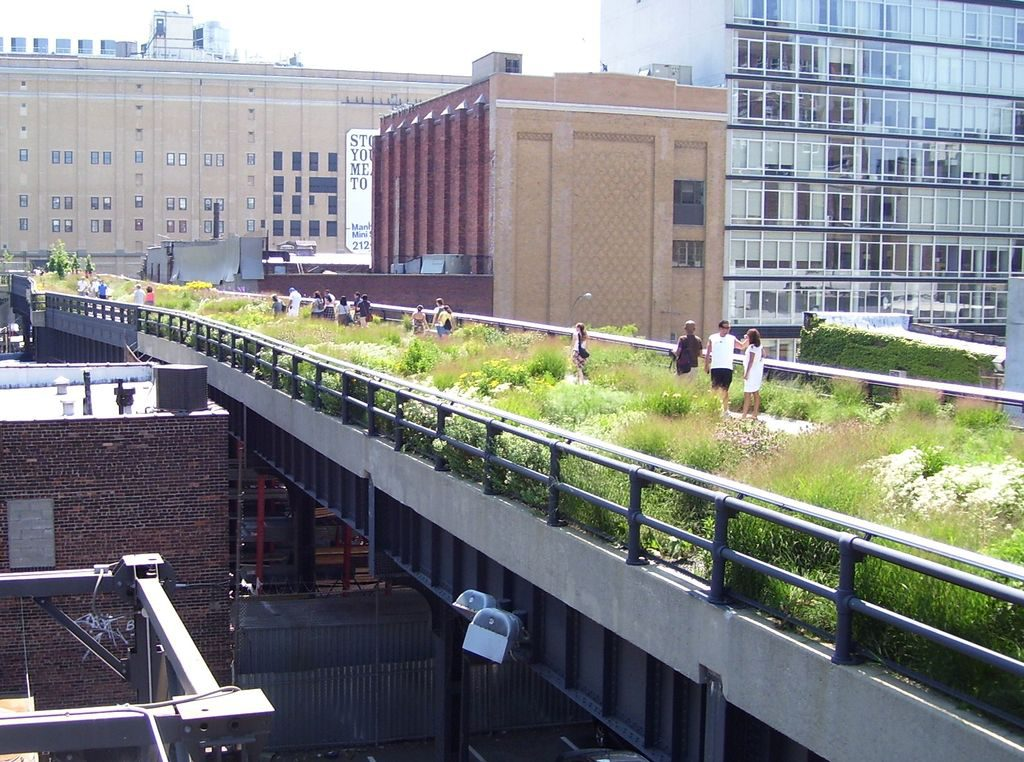 The High Line in NYC is an elevated park filled with greenery