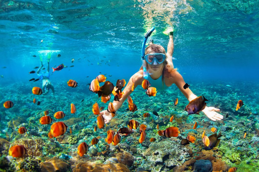 A happy couple snorkels above a coral reef filled with orange tropical fish