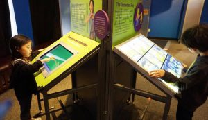 Two children interact with a tablet on an exhibit at the Chicago Children's Museum
